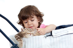 Funny child playing with attractive kitten Royalty Free Stock Photography