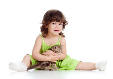 Funny child playing with Scottish kitten Royalty Free Stock Photography