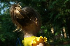 Funny child pony tail in sunlight. View from the back stock photography