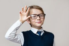 Funny child. Portrait of handsome smiling little smart schoolboy in glasses. Objects over white. Child boy teenager with glasses on a gray background Stock Photos