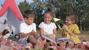 Funny children, joyful little friends read book and show comical faces to each other on picnic in forest during weekend. Funny children, joyful little friends stock footage