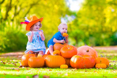 Funny children at pumpkin patch. Happy children at pumpkin patch during Halloween, little girl in a blue dress, boots and cowboy hat and baby boy having fun Royalty Free Stock Images