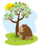 Funny chimpanzee and the little snail sitting under the tree with red fruits falling. Vector illustration Stock Photos