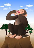 Funny chimpanzee monkey sitting in nature background Royalty Free Stock Images