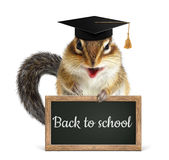 Funny chipmunk hold blackboard, back to school concept Royalty Free Stock Image