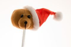 Funny Christmas bear Stock Image
