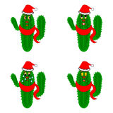 Funny christmas cacti. Vector-art illustration on a whte background Stock Images