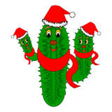 Funny Christmas cactus. Vector-art illustration isolated on a white background Stock Images