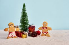 Funny christmas cookies in swimsuit with Christmas tree and gift royalty free stock photo