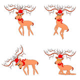 Funny christmas deers on a white background Stock Photography