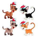 Funny Christmas dogs and cats Royalty Free Stock Photos