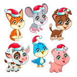 Funny Christmas farm animals Royalty Free Stock Images