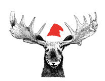 Funny Christmas Moose with Santa Claus hat. Funny hand drawn Christmas sketch illustration of moose trophy head scene with big antlers and Santa Claus hat royalty free illustration
