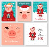 Funny Christmas pigs, Greeting cards Merry Christmas and New Year 2019. Pig Santa Claus, Christmas cards Mega Bundle. Vector illustration EPS 10 royalty free illustration