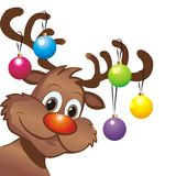 Funny christmas reindeer Stock Photos
