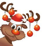 Funny christmas reindeer Royalty Free Stock Photo