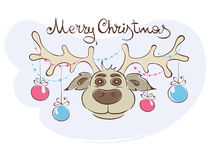 Funny Christmas Reindeer Stock Images