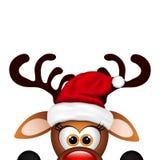 Funny Christmas Reindeer Royalty Free Stock Photo