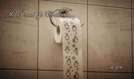 Funny Christmas Theme feat. festive Toilet Roll stock photo