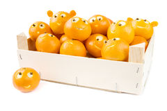 Funny clementines in box royalty free stock images