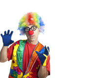 Funny clown. Clown male with funny glasses on white isolated with extra white space Royalty Free Stock Photos