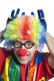 Funny clown. Clown male with funny glasses on white isolated Stock Photos