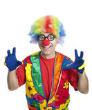 Funny clown. Clown male with funny glasses on white isolated Stock Images