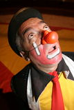 Funny clown. Portrait of funny middle aged clown in red nose with surprised expression Royalty Free Stock Photography