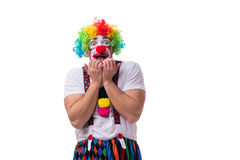 The funny clown acting silly isolated on white background. Funny clown acting silly isolated on white background royalty free stock photo