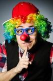 Funny clown Royalty Free Stock Photo