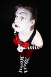 Funny clown with  big red bow Royalty Free Stock Image
