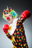 Funny clown with box Stock Images
