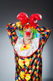 The funny clown with boxing gloves Stock Photo