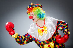 The funny clown with boxing gloves Stock Photos