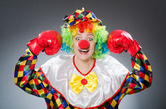 Funny clown with boxing gloves Royalty Free Stock Images
