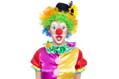 Funny clown - colorfullportrait Royalty Free Stock Photos