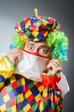 Funny clown in comical concept Stock Images