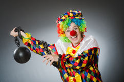 The funny clown in comical concept Royalty Free Stock Image