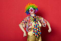 Funny clown with glasses on red Royalty Free Stock Image