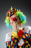 Funny clown in humor Stock Photography
