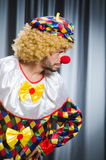 Funny clown in humorous concept Stock Photo