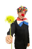 The funny clown isolated on white Stock Image