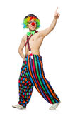 Funny clown isolated Royalty Free Stock Photo