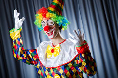 Funny clown in studio Stock Images