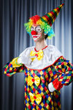 Funny clown in studio Royalty Free Stock Image