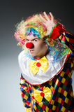 Funny clown Royalty Free Stock Image