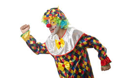 Funny clown on  white Royalty Free Stock Images