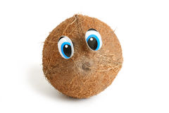 Funny Coconut With Eyes Royalty Free Stock Image