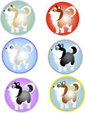 Funny colored puppies in a circle Royalty Free Stock Image
