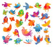 Funny colorful birdies Stock Images